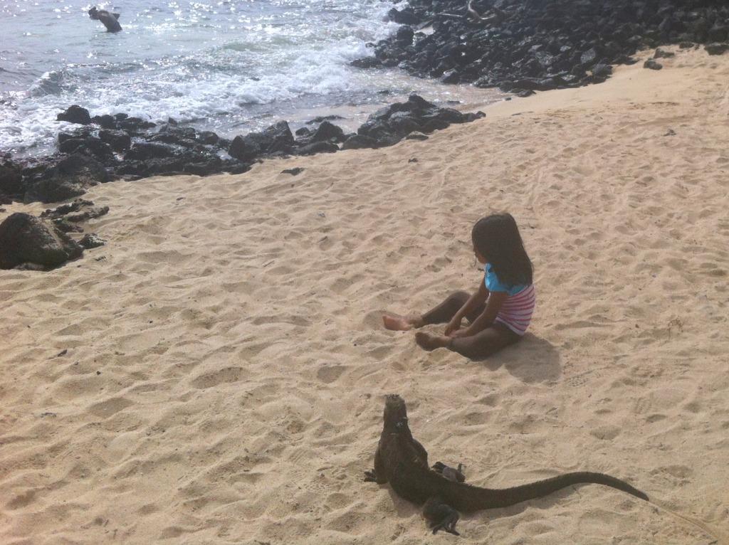 Galapagos: Eine Märchenland, in dem kleine Prinzessinnen von Drachen beschützt werden
