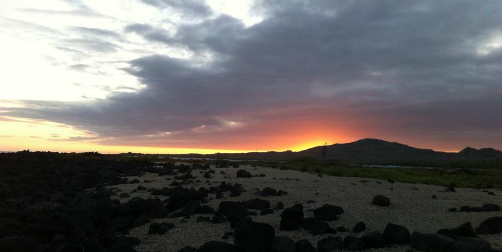 Den malerischen Sonnenuntergang genieße ich heute fast allein. Nur ein paar Leguan-Männchen wackeln aufgeregt mit ihren Köpfen.
